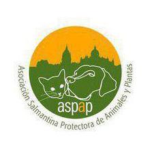 logo-aspap-(2)