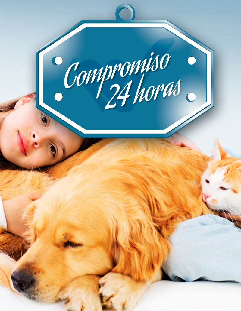Compromiso-24h-(02)