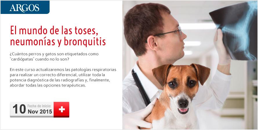 p80910_cabecera_toses_neumonias_bronquitis(1)